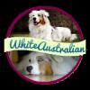 White-Australian