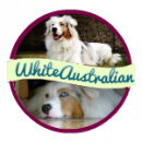 Photo de White-Australian
