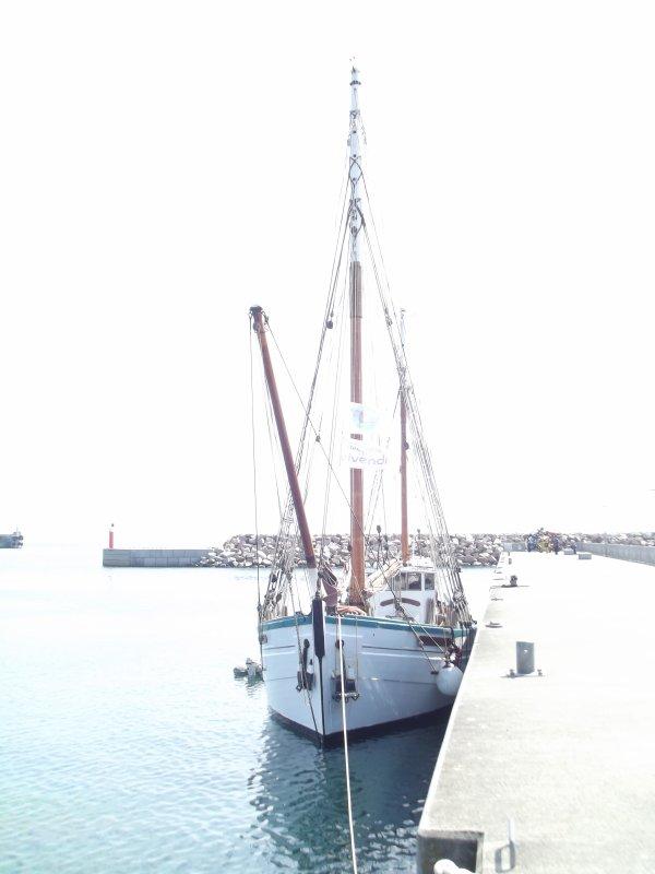 Port du Bloscon à Roscoff: voilier Fleur de Lampaul