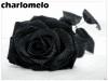 charlomelo