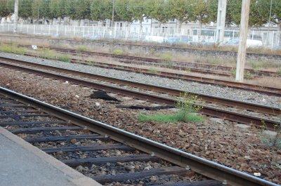 Gare de Libourne, le temps d'un stage.