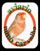 aviarionunocarvalho