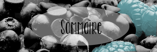 . Sommaire .