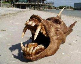 Horrible créature