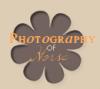 PhotographyOfHorse