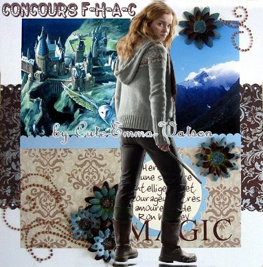 .○• 24 novembre 2010 •○. Harry Potter et les Reliques de la Mort (partie1)