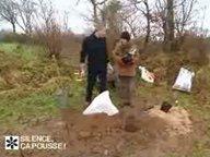 Planter les framboisiers ( Février )