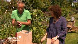 Fabriquer un abri à coccinelles ( Septembre )