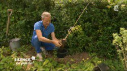 Installer une grimpante en terre lourde ( Septembre )