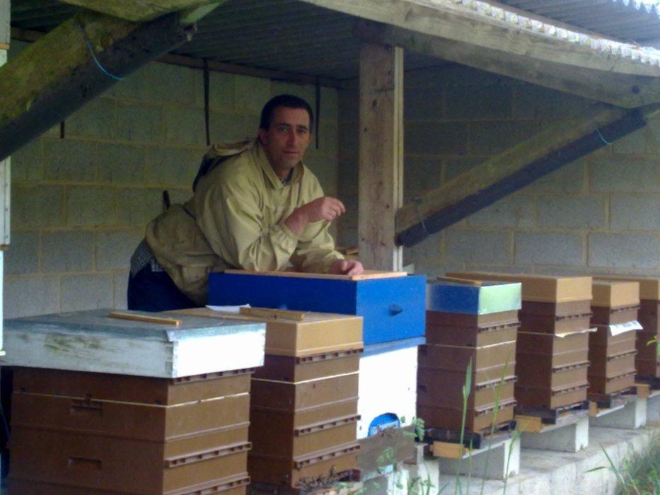 apicultures