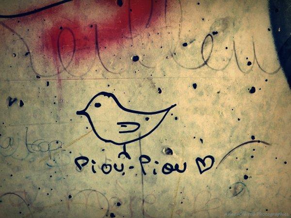 ☈☇ Cair ☇☈
