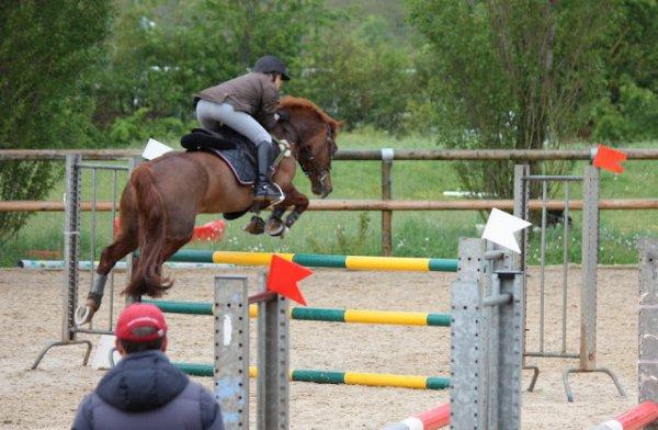 Et quelques belles photos de sauts  avec OSAKA  grand frère de CIMAËL !!!!