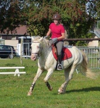 """Q'ZARA SPONTE est   """"  élite Loisir 2012 """"  ce 09/09 !!!  Bravo à sa cavalière Marie qui ne l'a montée que 3 fois !!!"""