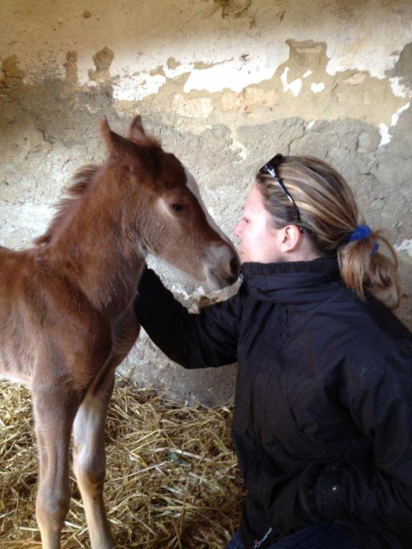 Deux naissances à l' élevage Sponté  !!!!