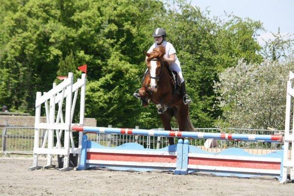 les poneys en compétitions...