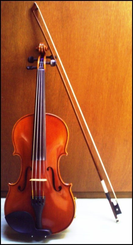 [Il parait que la musique ne s'apprend pas, que c'est un don reçu ou non dans le berceau...]