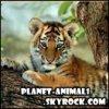 planet-animal1