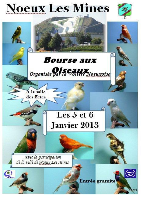 Bourse de la volière noeuxoise le 05 & 06 janvier 2013