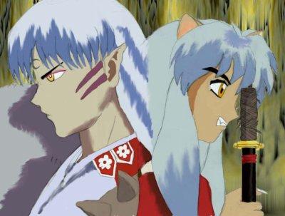 chapitre 14     inuyasha et shessomaru reconsiliers : kagome contre naraku , shessomaru et inuyasha arriveront t'il a teps ......