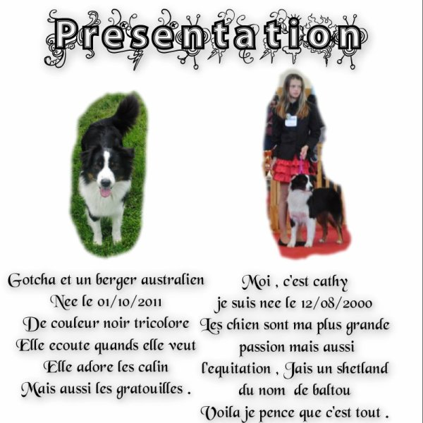 Article n°2 : Les Presentataion