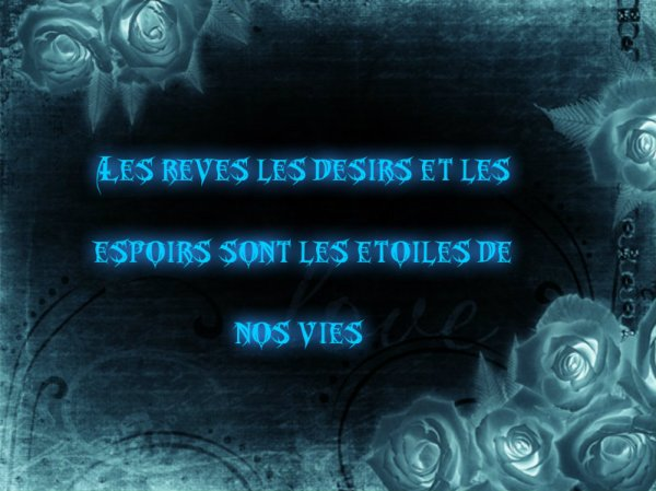Ma citation du jour