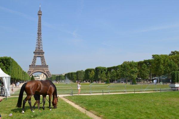 Paris Eiffel Jumping 2015, avec ... Les Ponn's de Brimborion !