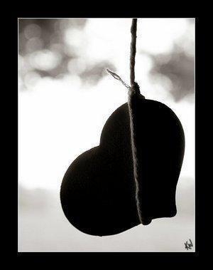 un amour a ma branche