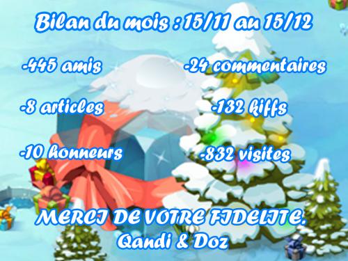 Bilan Blog : Mois 1 (15/11-15/12)