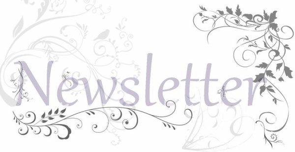 -  [ NEWSLETTER ]  -