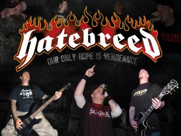 † Hatebreed † Live For This -  †