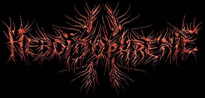 ✠... !!! New 2014 !!! Heboidophrenie - Beheaded [Guitar Playthrough]... ✠