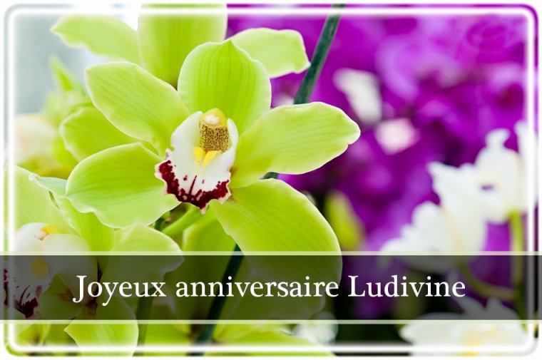 ⚫⚪ <> Joyeux Anniversaire Mon Amie Ludivine <> ⚪⚫