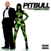 pitbull-love-in