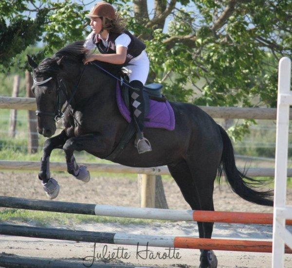 il et plus q'un cheval il et mon spirit
