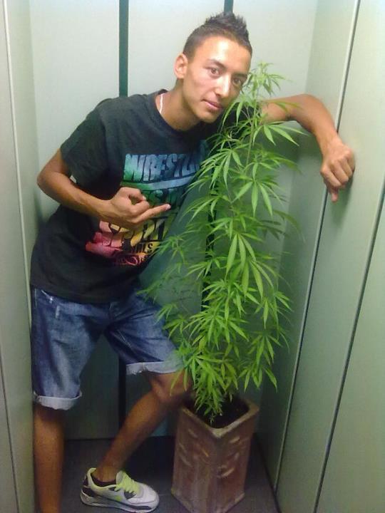 ♥ marijuana ♥
