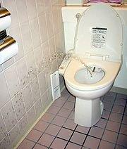 WC Japonais : effet bénéfique pour la santé ?
