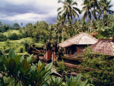 Vivre et travailler en Indonésie