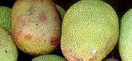 Thaïlande : Les fruits du paradis 2