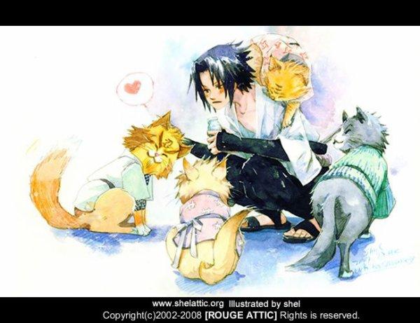 Sasuke (& 4 cats)