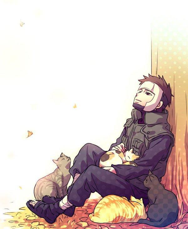 Yamato & cats