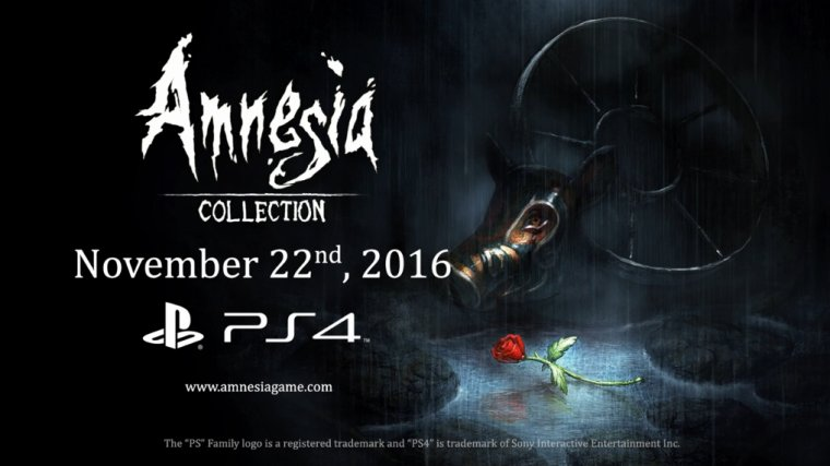 Amnesia collections