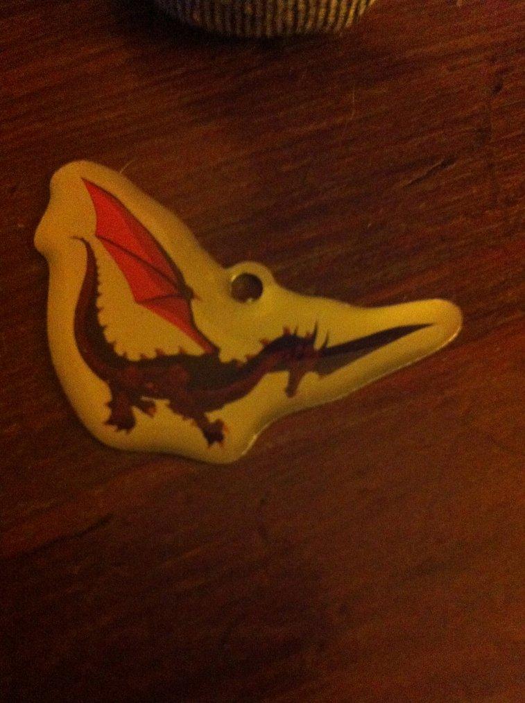 Séance :dragon un jour dragon toujours !