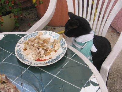 bonne apetit mont chaton