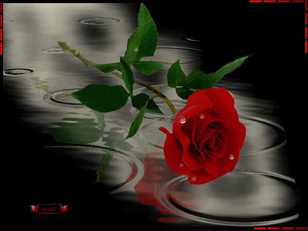 Pour la journée de la femme aujourd'hui servez vous sait pour vous!!!!! )