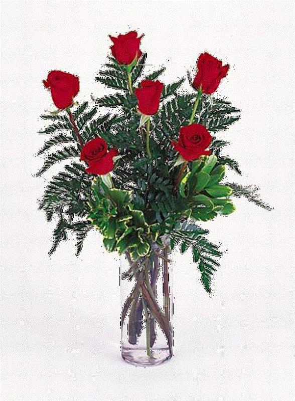 POUR MES 6 AMIES QUE JE RESPECTE BEAUCOUP UNE ROSE A CHACUNE  BISOUS TENDRESSE A VOUS