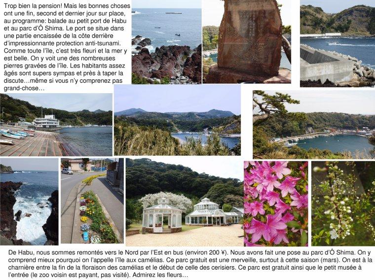 Ô Shima, îles de Tôkyô