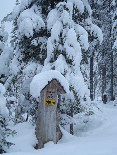hiver 2010/2011