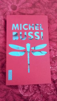 Un avion sans elle, Michel BUSSI