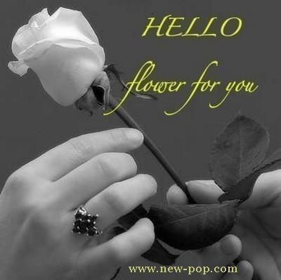 qui veux ma rose