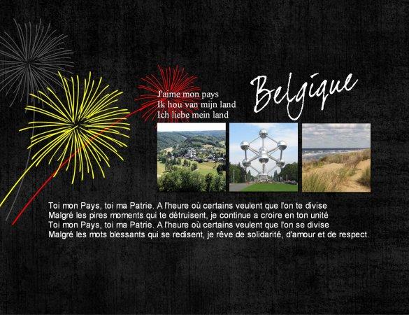 21 juillet.... c'est notre Fête Nationale....